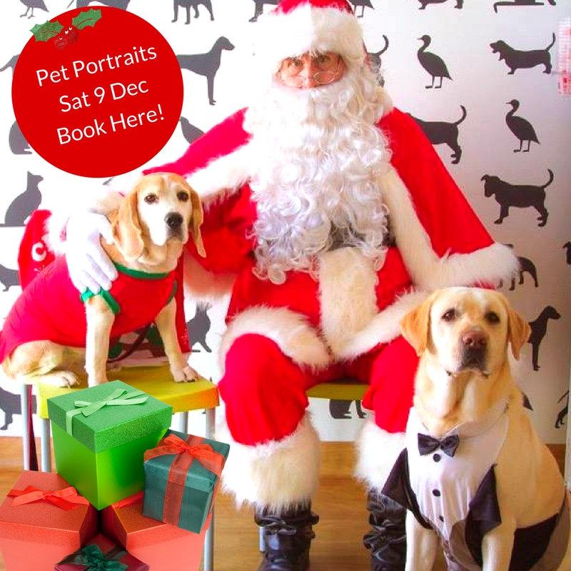 Santa Paws Photos - Sun 13 Dec 2020