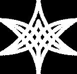 logo blanc sans texte.png
