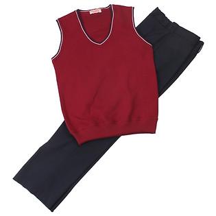 Комплект школьной формы для мальчика (брюки и трикотажный жилет)