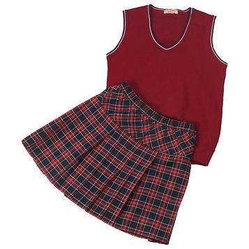 Комплект школьной формы для девочки (жилет трикотажный и юбка)
