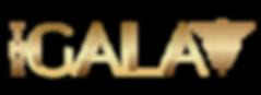 thegalaSA_edited.png
