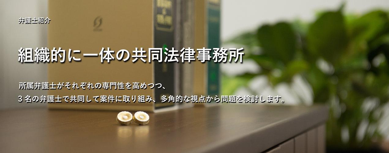 弁護士,浜松,掛川