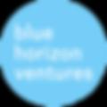 bhv_logo-blue.png