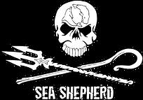 sea-shepherd-png-3.png