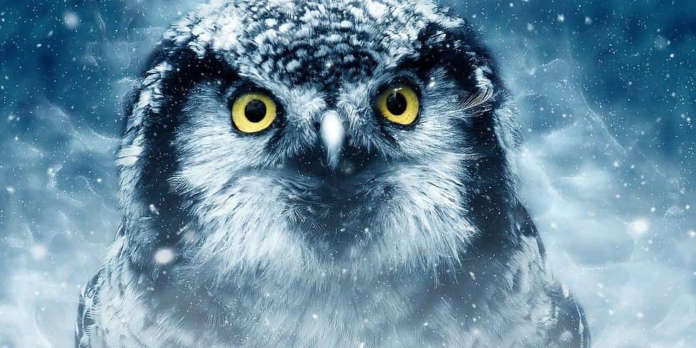 OWL Totem Painting Class