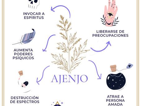 Ajenjo- Artemisa Absinthium