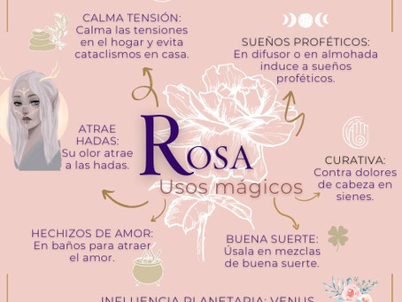 Rosa. Usos mágicos.