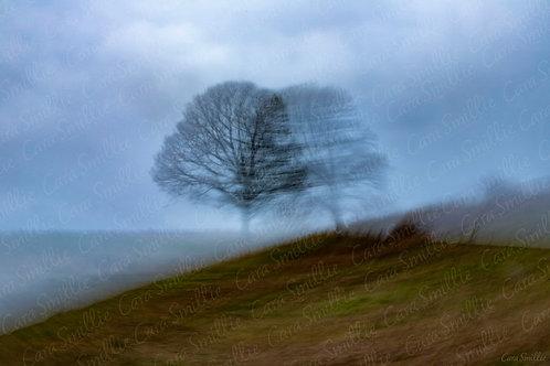 Lonely Tree ICM Print