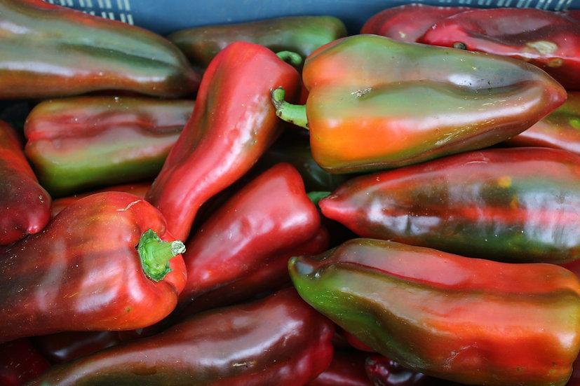 Pepper - Ancho (Poblano)