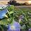 Thumbnail: Flower - Morning Glory, Clark's Heavenly Blue