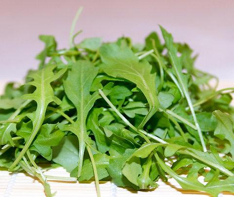 Arugula - Salad Green (Southern Acclimated)