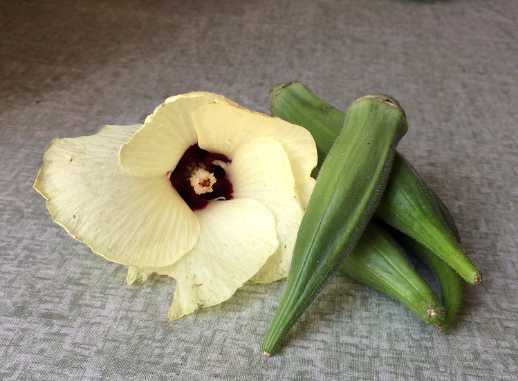 Okra - Dwarf Long Green Pod