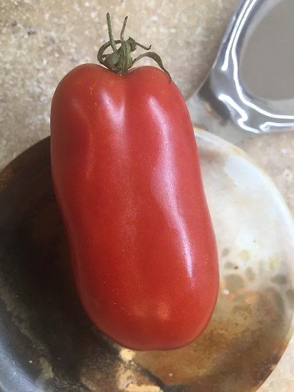 Tomato - Sausage (Southern Acclimated)