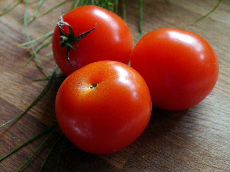Tomato - Bradley