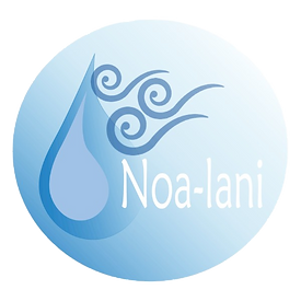 2x2%2520Noa-lani%2520logo%2520with%2520w