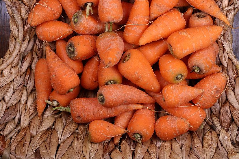 Carrot-Chantenay