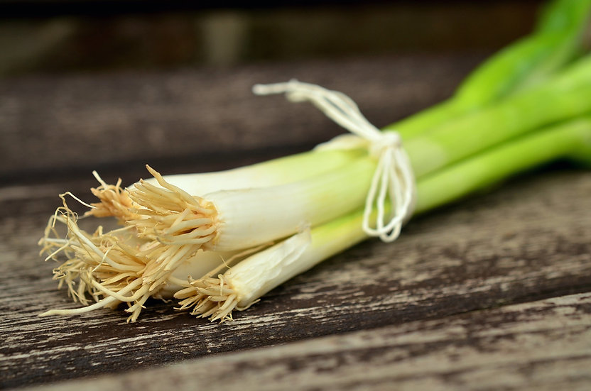 Onion - Evergreen White Nebuka Bunching