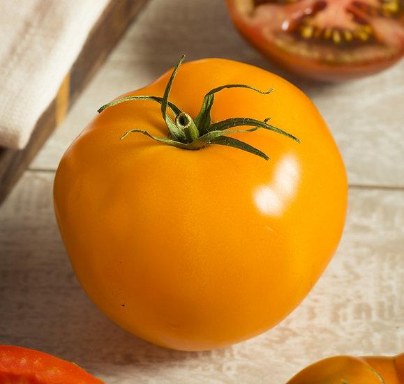 Tomato - Sunray