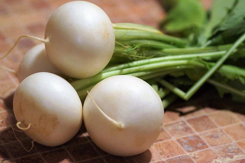 Turnip - White Egg
