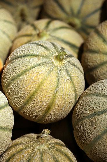Melon - Canteloupe, Ha'Ogen