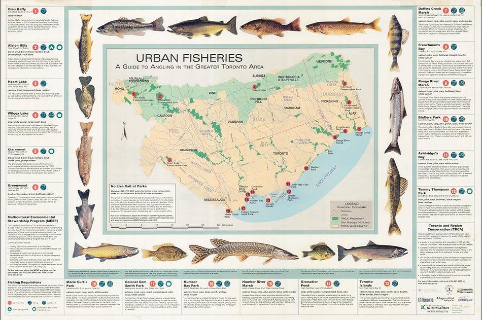 URBAN FISHERIES, TORONTO