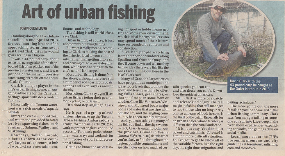 ART OF URBAN FISHING ARTICLE