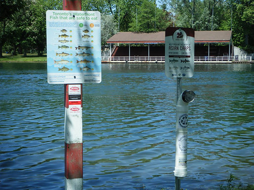URBAN FISHING SIGNAGE BY WATERWAYS