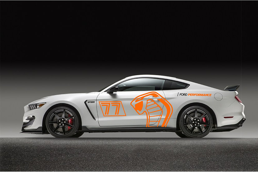 Snake Livery 2 Track # Package