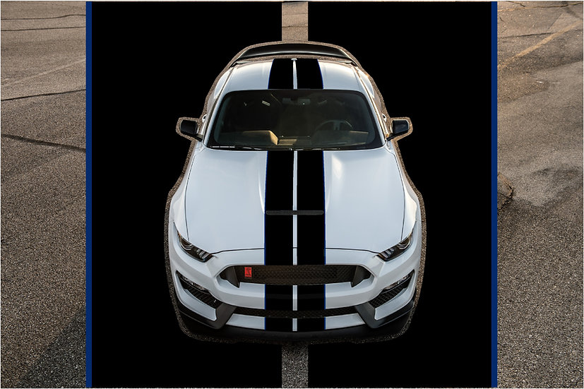 CLEARANCE: GT350/R Pinstripes /Overlay Kit