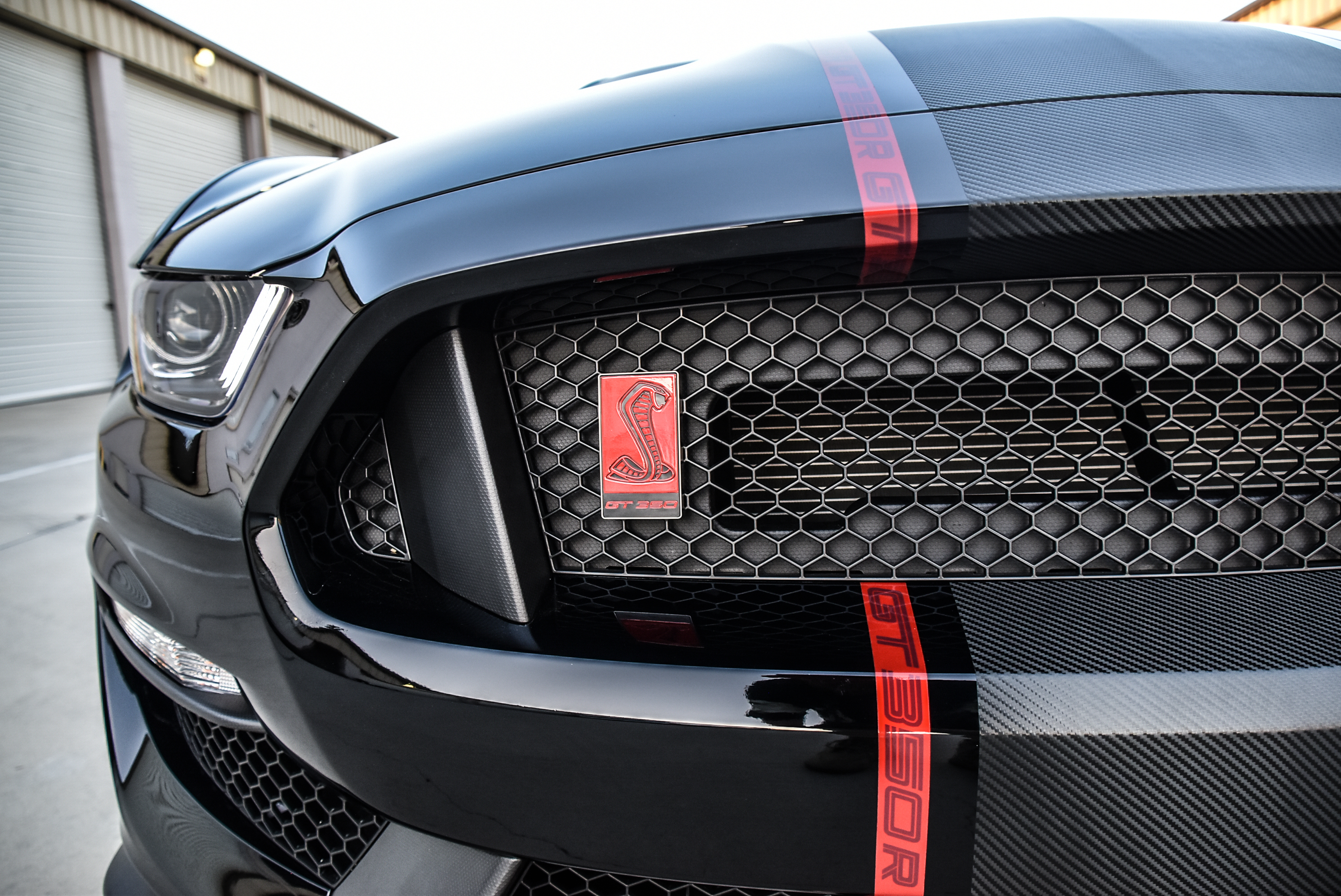 Shelby GT350R Center Stripes