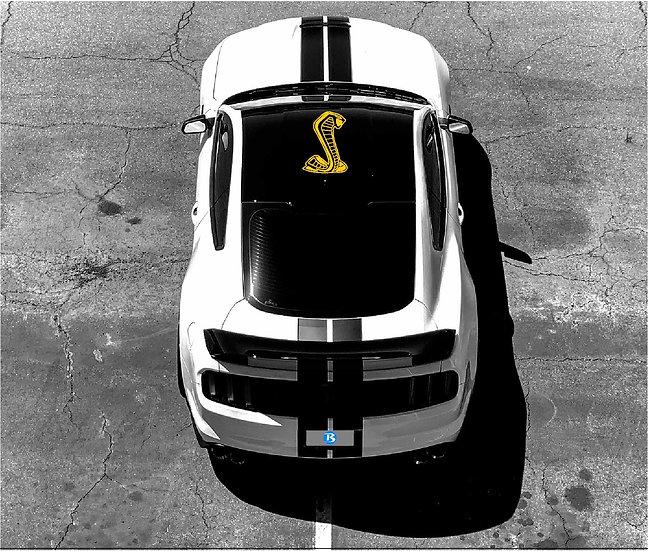 Roof GT350 & GT500 Snake
