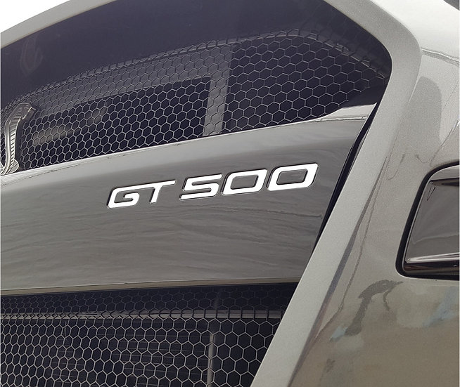 GT500 Front Bumper Logo Inlay