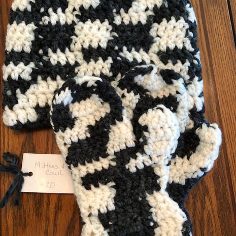 Mittens and Cowl Set - $20.00