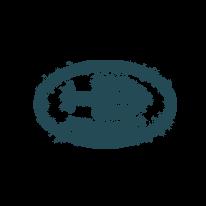 Logo-Bianchi.png