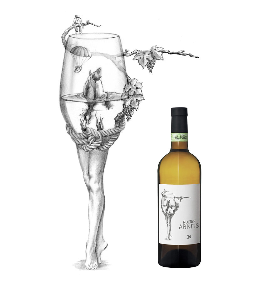 Illustration Wine Label