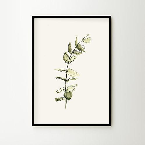 Artprint – Eucalyptus
