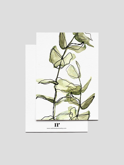 A6 Greetingcard: Eucalyptus