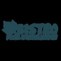 Logos-Comm-Petrol_BistroStadi.png