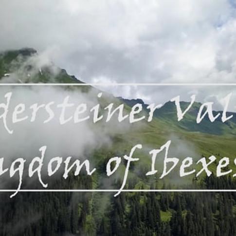 Widersteiner Valley