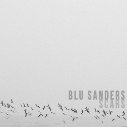 BluSandersScarsArt