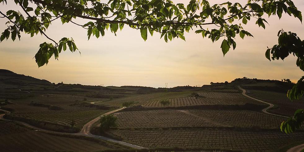 Diverse Rioja