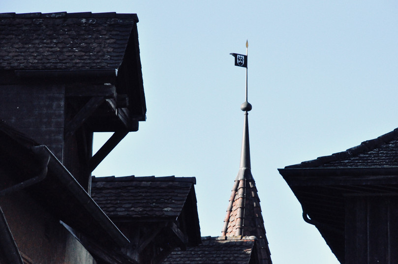 Dächer von Ligerz