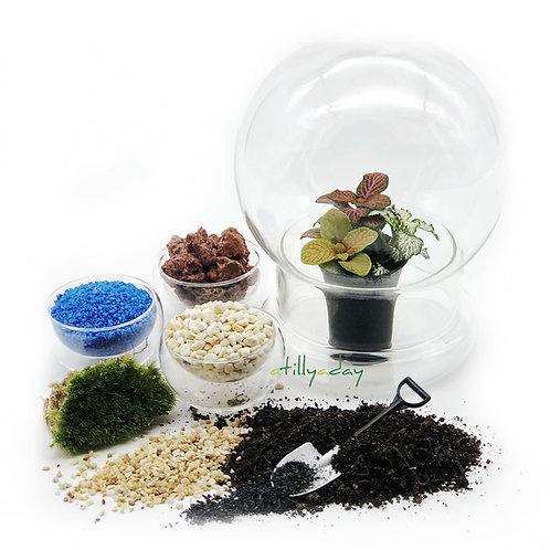 DIY Round Dome Terrarium Package