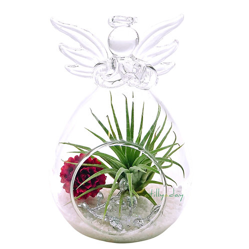 Air Plant in Angel-shaped glassware with artificial rose and white pebbles