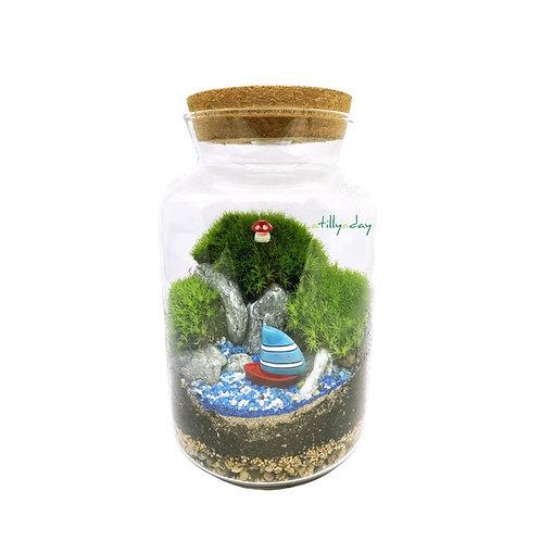 Customised Closed Terrarium Tall Jar