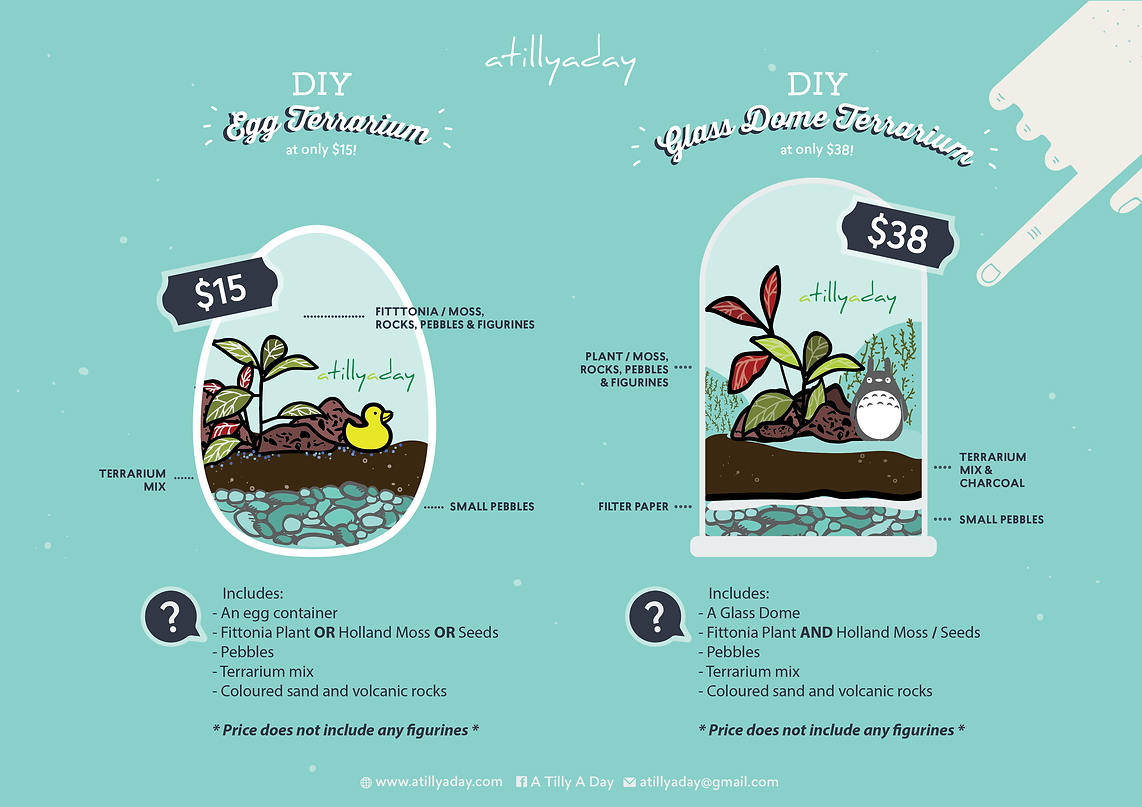 DIY Terrarium Workshop Singapore