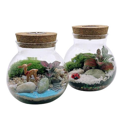 Customised Closed Terrarium Small Jar