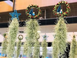 Christmas Air Plant Decoration