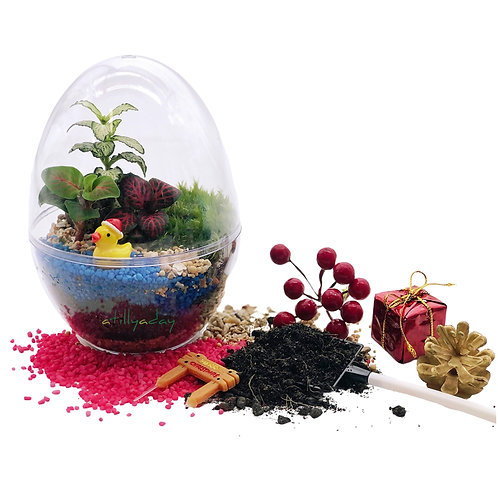 Christmas DIY Terrarium Kit
