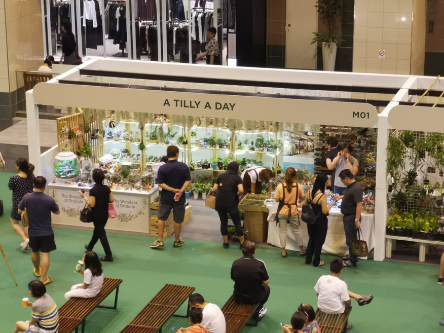 A Tilly a Day @ Takashimaya